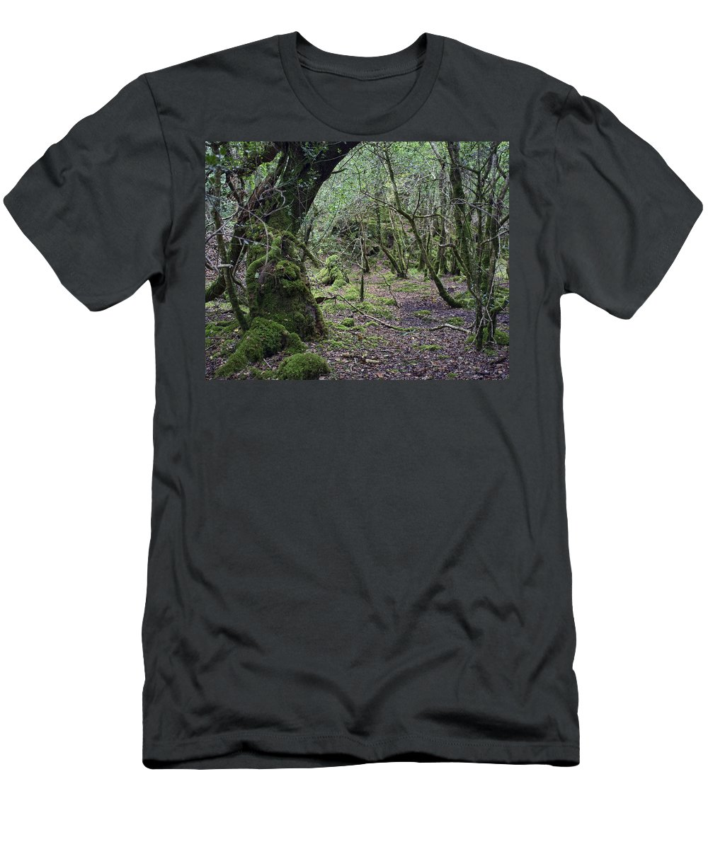 Photograph Men's T-Shirt (Athletic Fit) featuring the photograph Magical Forest by Hugh Smith