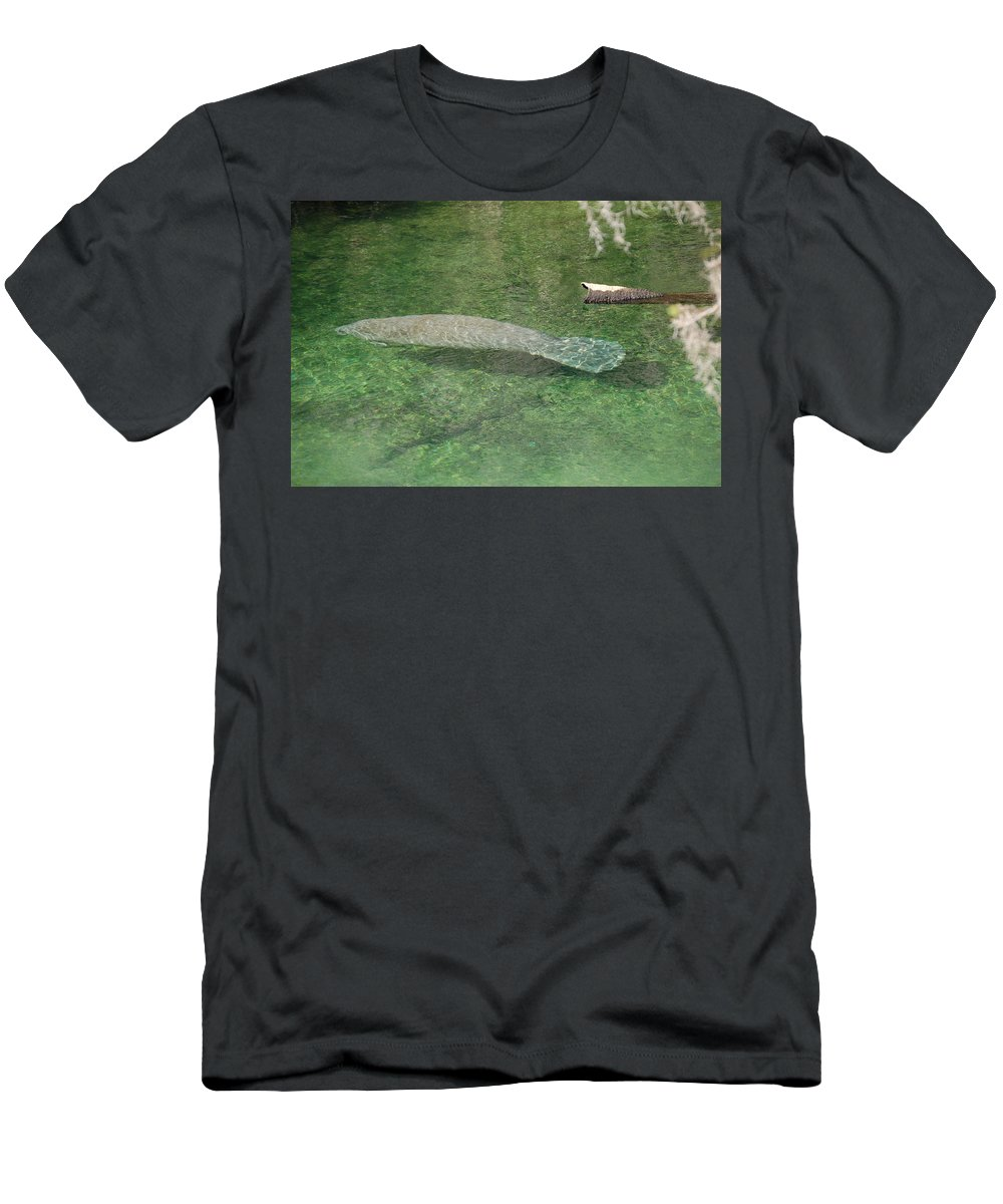 Manatee Men's T-Shirt (Athletic Fit) featuring the photograph Manatee by Randy J Heath