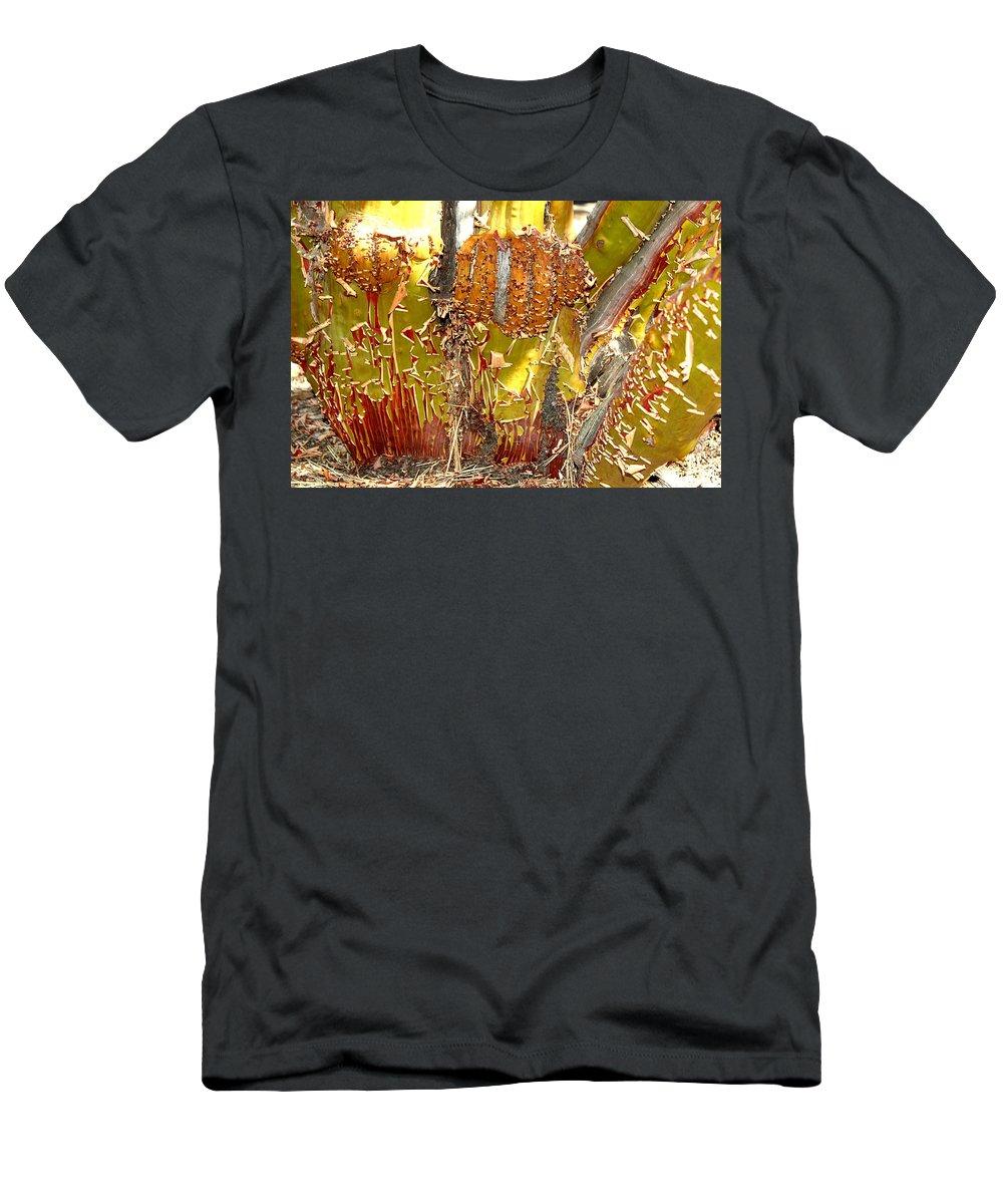Manzanita Tree Men's T-Shirt (Athletic Fit) featuring the photograph Manzanita Knees by Leigh Meredith