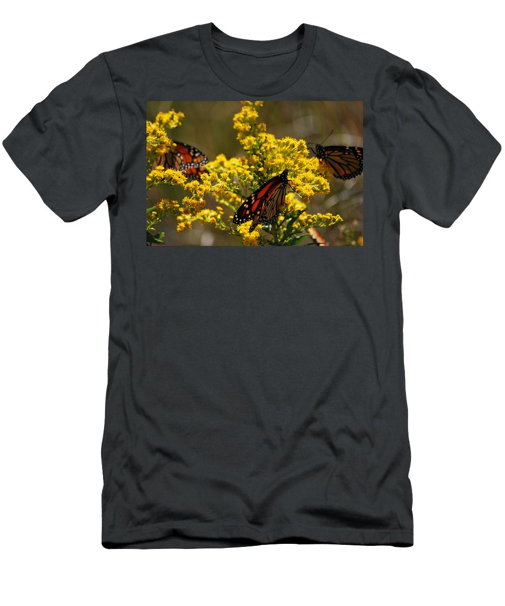 Monarch Men's T-Shirt (Athletic Fit) featuring the photograph Monarchs On Yellow by Lori Tambakis