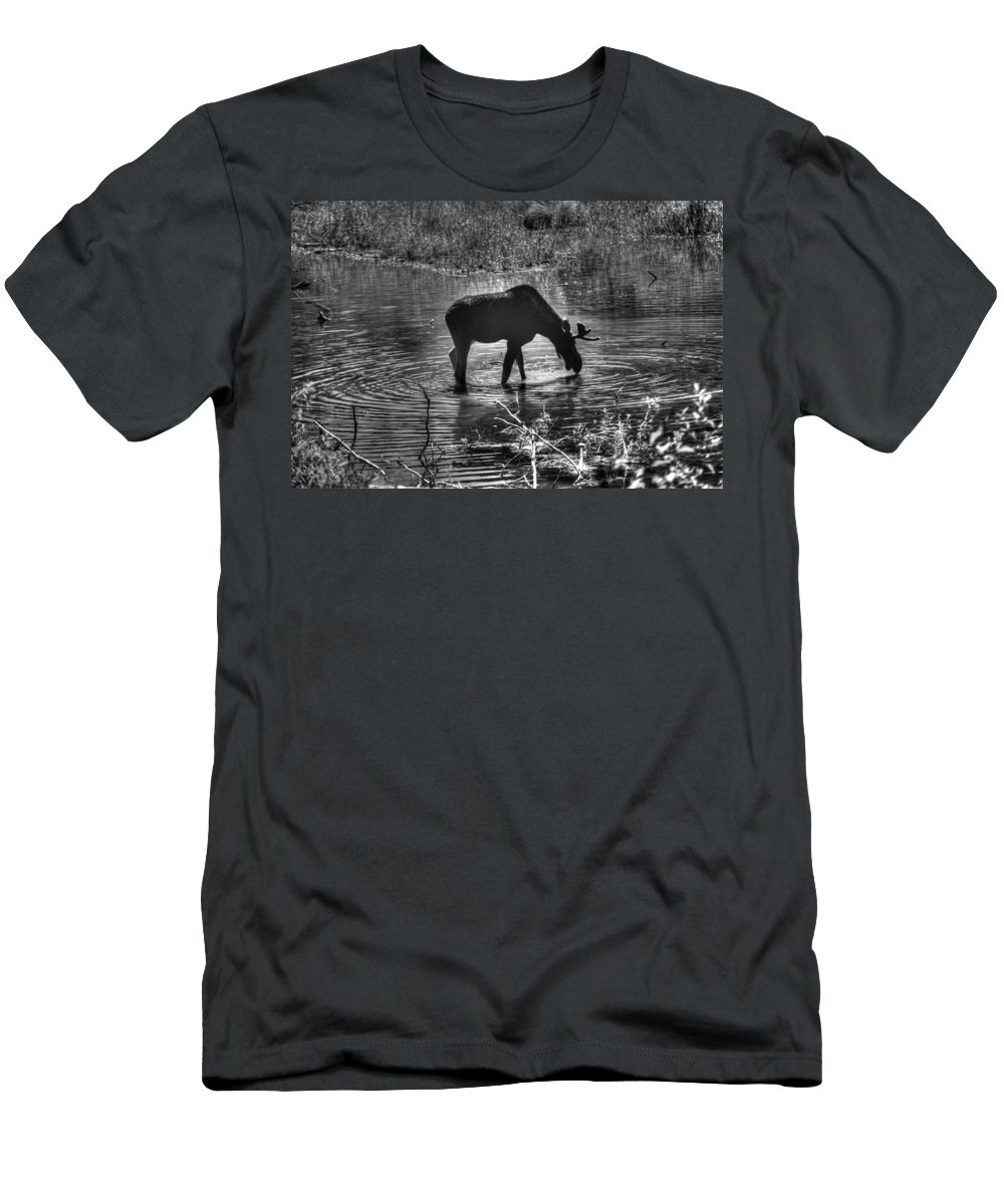 Alces Alces Men's T-Shirt (Athletic Fit) featuring the photograph Moose Silhouette by One Rude Dawg Orcutt