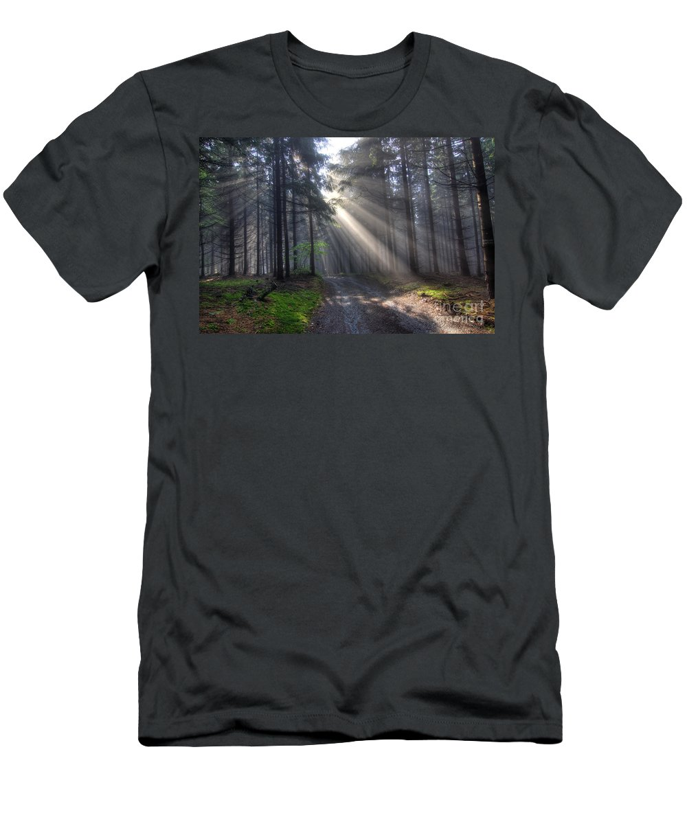 Rays Men's T-Shirt (Athletic Fit) featuring the photograph Morning Forest In Fog by Michal Boubin