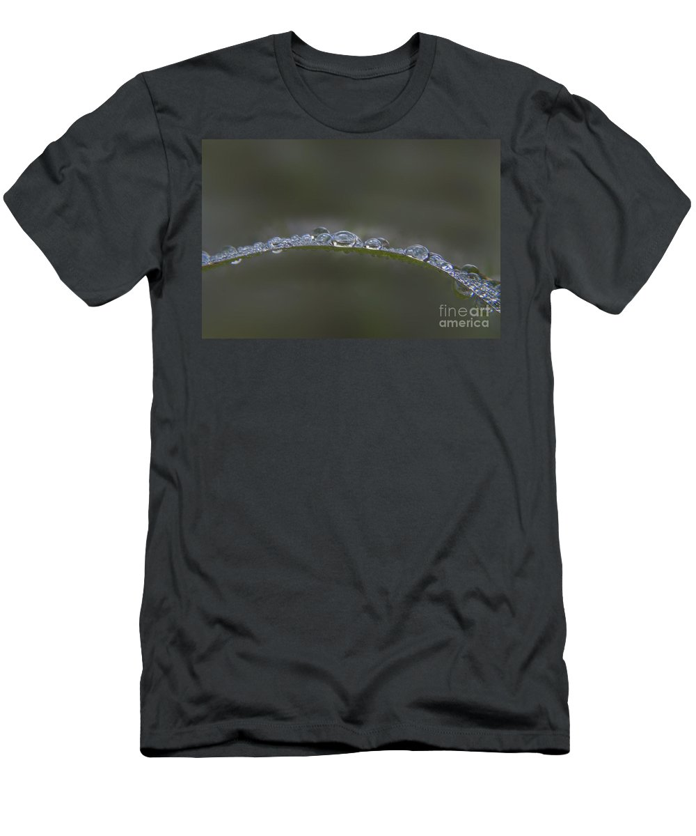 Raindrop Men's T-Shirt (Athletic Fit) featuring the photograph Morning Raindrops On Wild Grass by Darleen Stry