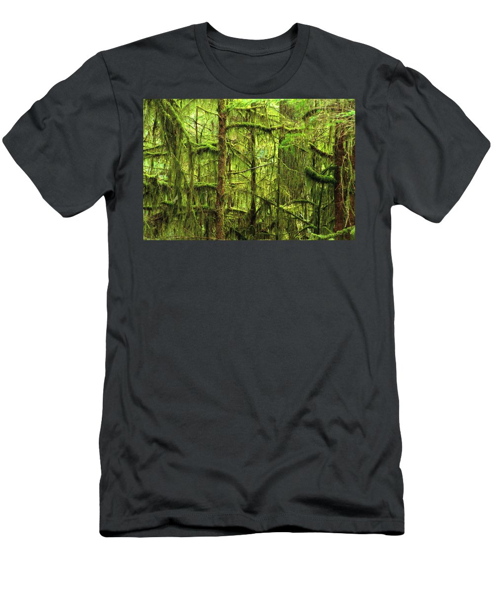 Branches Men's T-Shirt (Athletic Fit) featuring the photograph Moss-covered Trees by Corey Hochachka