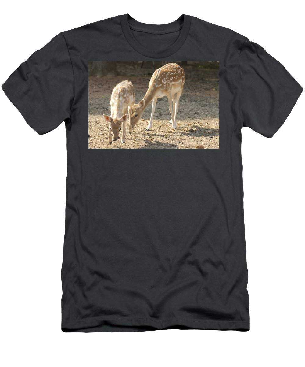 Deer Men's T-Shirt (Athletic Fit) featuring the photograph Mother And Child V2 by Douglas Barnard
