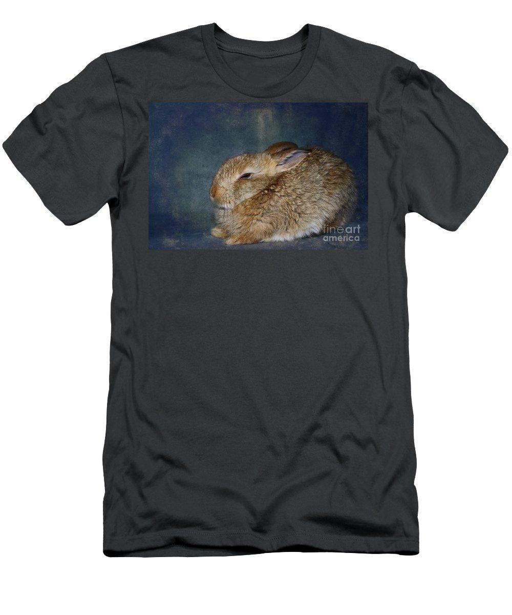 Rabbit Men's T-Shirt (Athletic Fit) featuring the photograph Mr Canelle by Aimelle