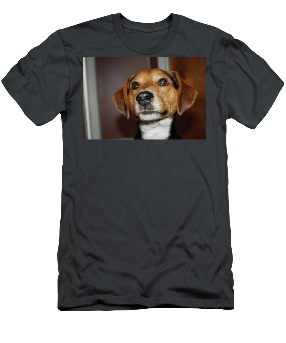 Dog Men's T-Shirt (Athletic Fit) featuring the photograph Murphy 8596 by Guy Whiteley