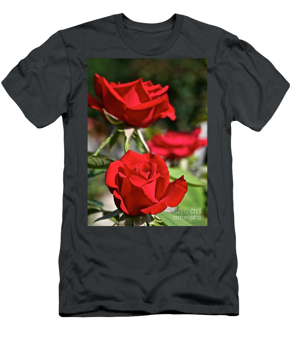Plant Men's T-Shirt (Athletic Fit) featuring the photograph National Trust Rose by Susan Herber