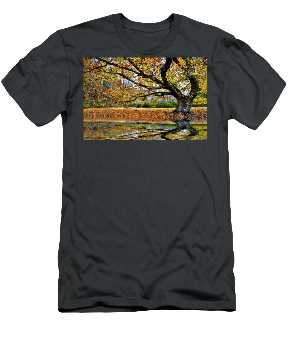 Andrews Men's T-Shirt (Athletic Fit) featuring the photograph Ol' Chestnut by Debra and Dave Vanderlaan