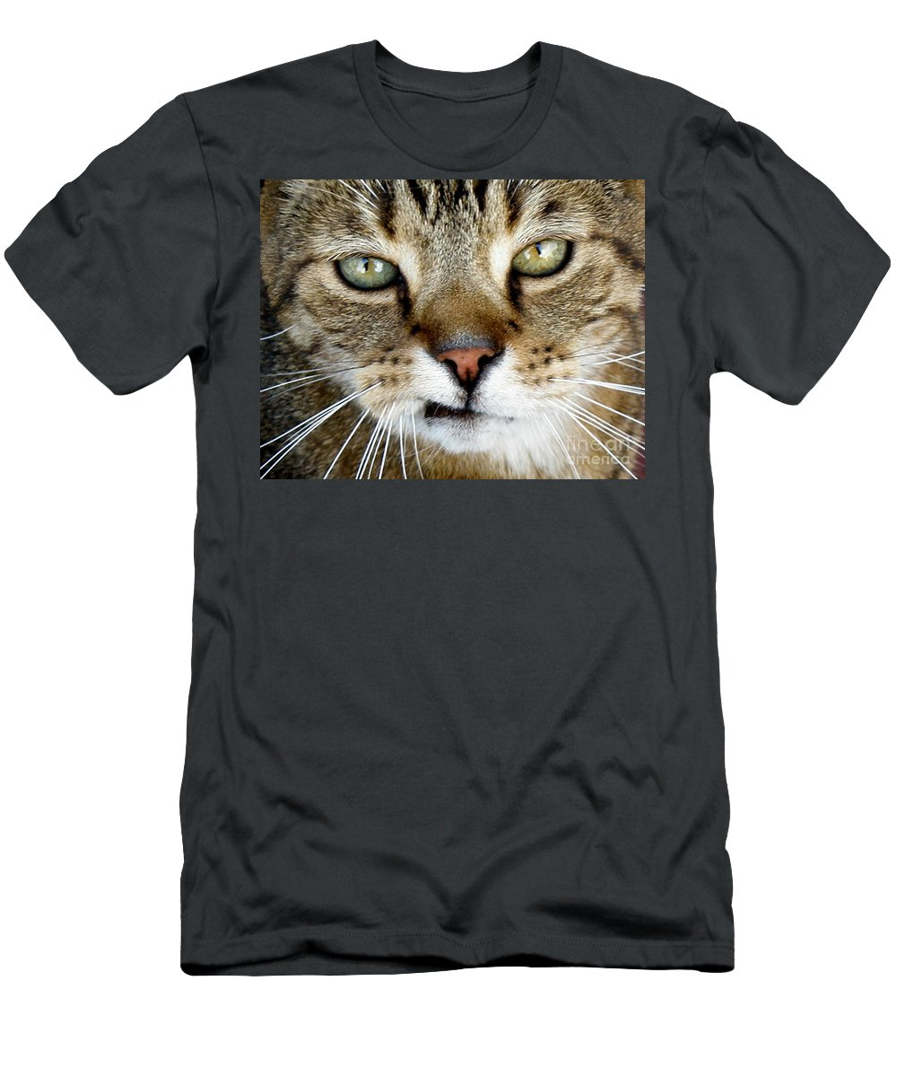 Cat Men's T-Shirt (Athletic Fit) featuring the photograph Oliver The Cat by Lainie Wrightson