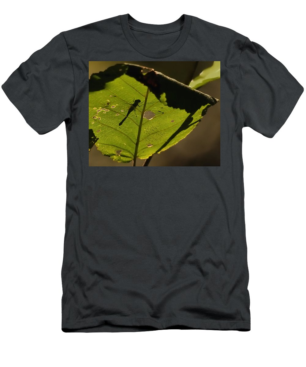 Nature Men's T-Shirt (Athletic Fit) featuring the photograph On The Other Side by Susan Capuano