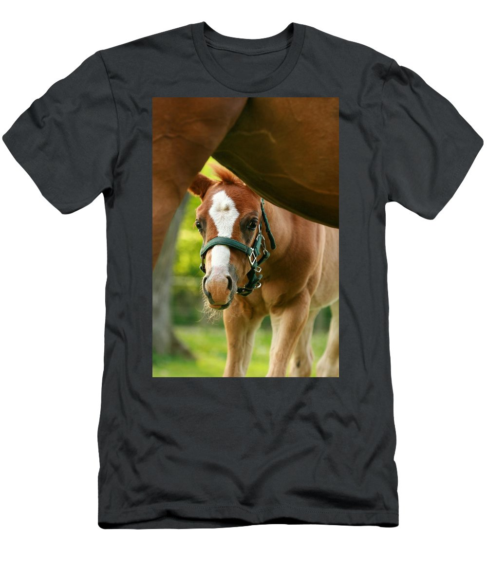 Horse Men's T-Shirt (Athletic Fit) featuring the photograph Peek'a Boo by Angela Rath