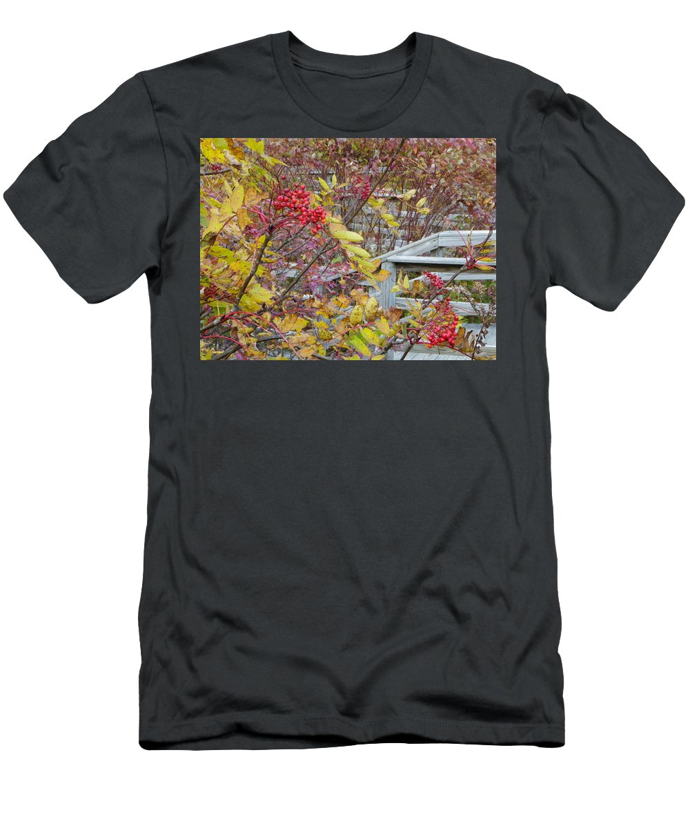 Red Berries Men's T-Shirt (Athletic Fit) featuring the photograph Peeking Through The Berries by Sarah Lamoureux