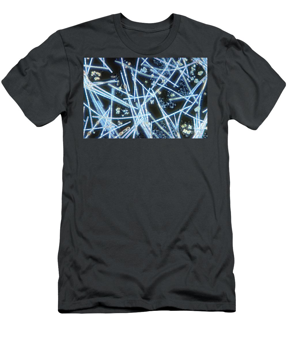 Light Microscopy Men's T-Shirt (Athletic Fit) featuring the photograph Phytoplankton by M. I. Walker