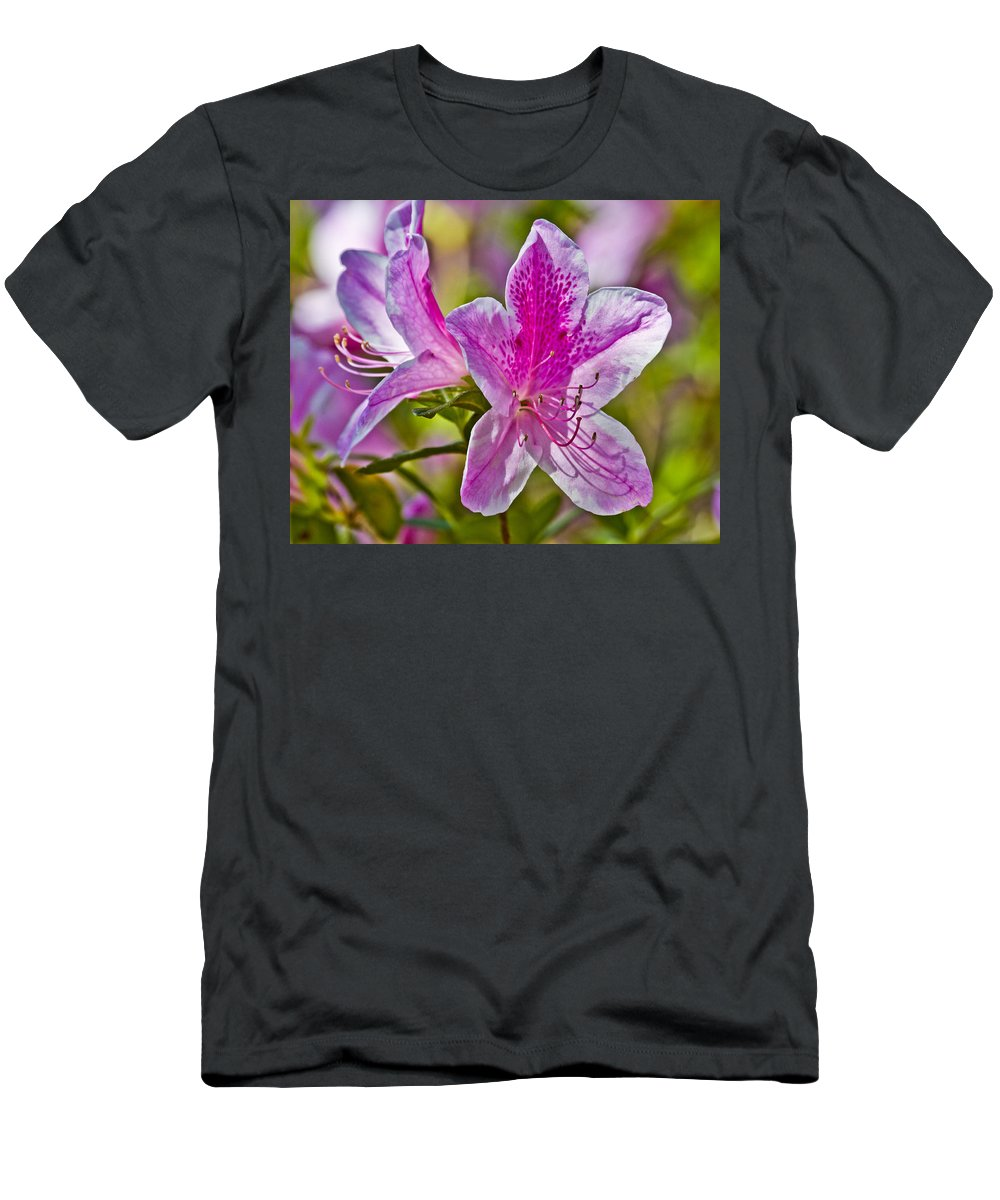 Flower Men's T-Shirt (Athletic Fit) featuring the photograph Pink by Betsy Knapp