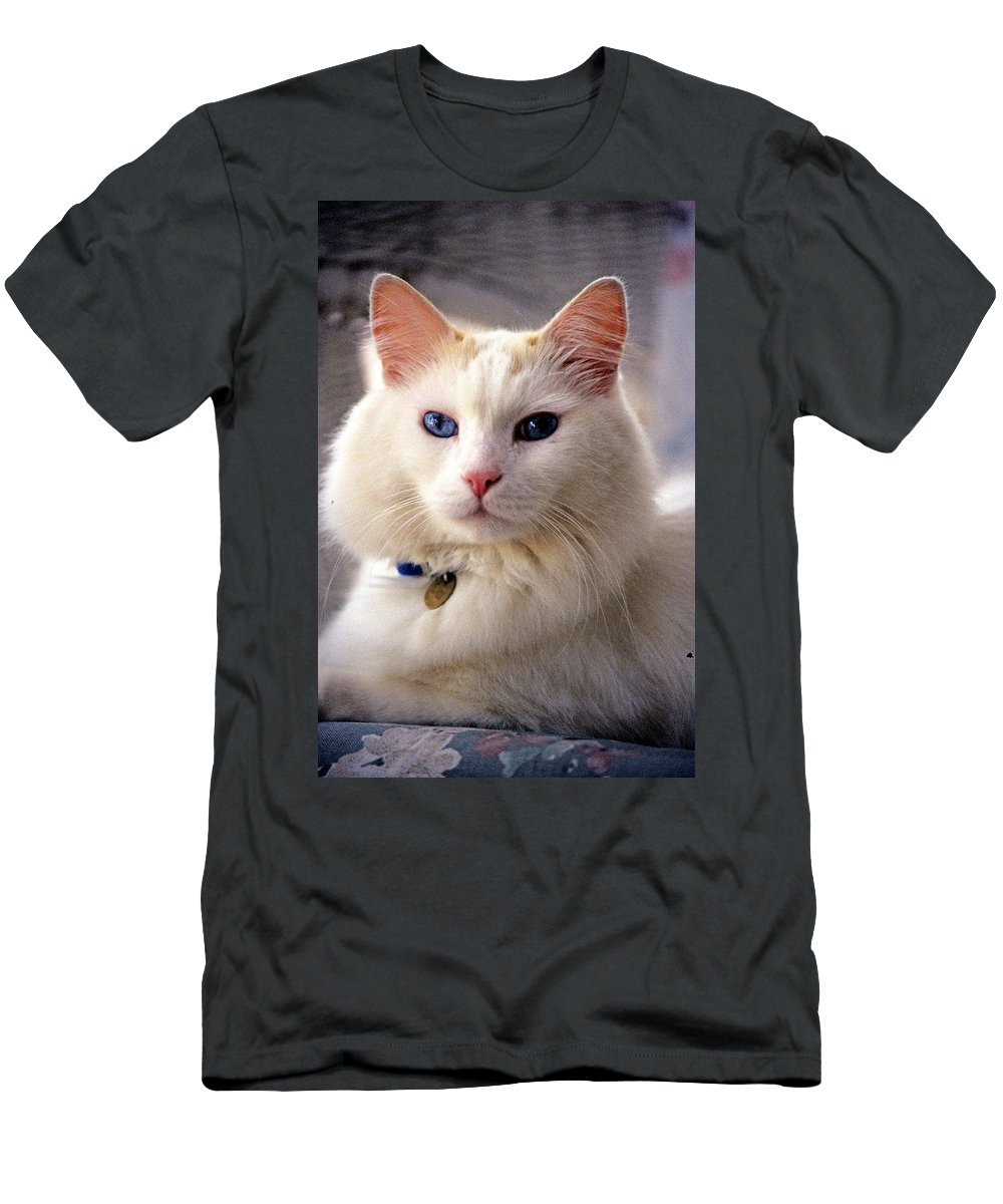 Domestic House Cat Men's T-Shirt (Athletic Fit) featuring the photograph Proud Mio by Larry Allan
