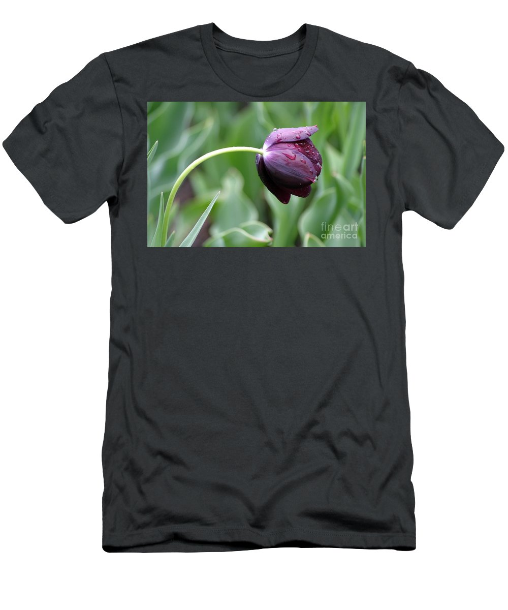 Floral Men's T-Shirt (Athletic Fit) featuring the photograph Purple Rain by Living Color Photography Lorraine Lynch