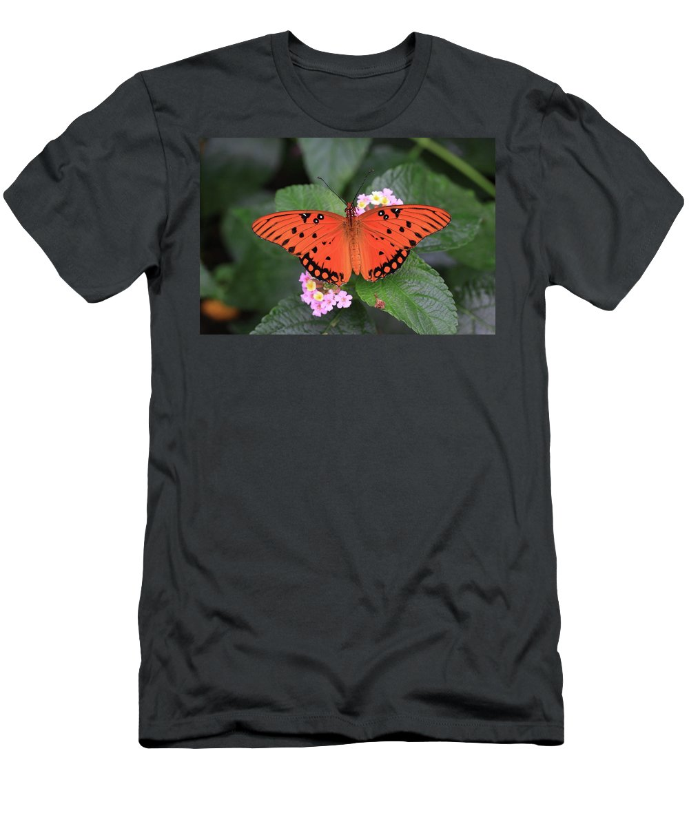Queen Butterfly Men's T-Shirt (Athletic Fit) featuring the photograph Queen Butterfly by Rick Berk