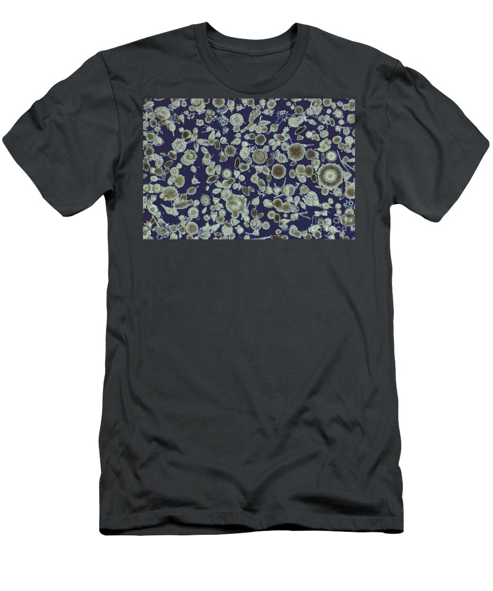 Science Men's T-Shirt (Athletic Fit) featuring the photograph Radiolarian Ooze Lm by M. I. Walker