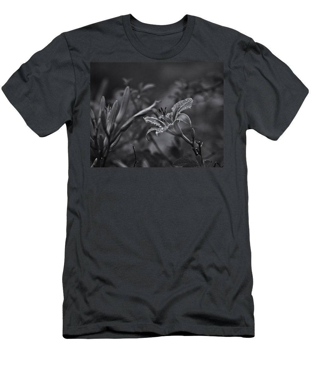 Tigerlily T-Shirts