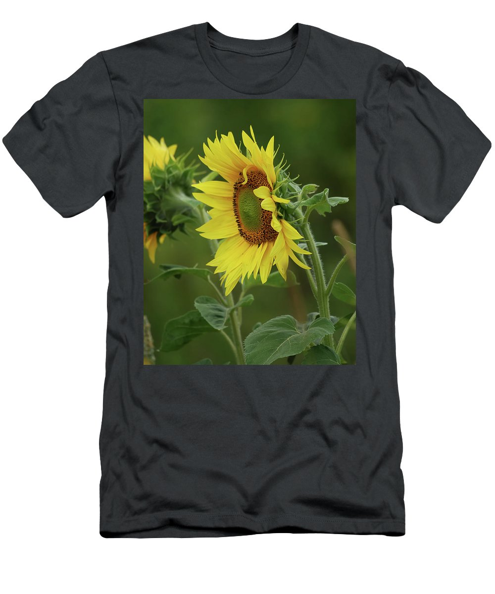 Nature Men's T-Shirt (Athletic Fit) featuring the photograph Reflective by Susan Capuano