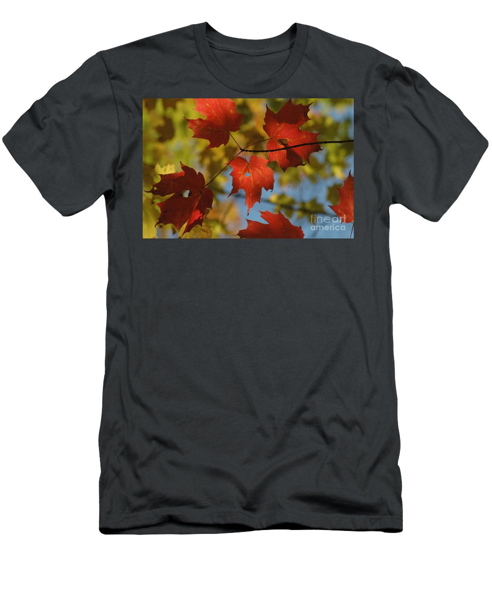 Red Men's T-Shirt (Athletic Fit) featuring the photograph Rgb Plus Y by Trish Hale