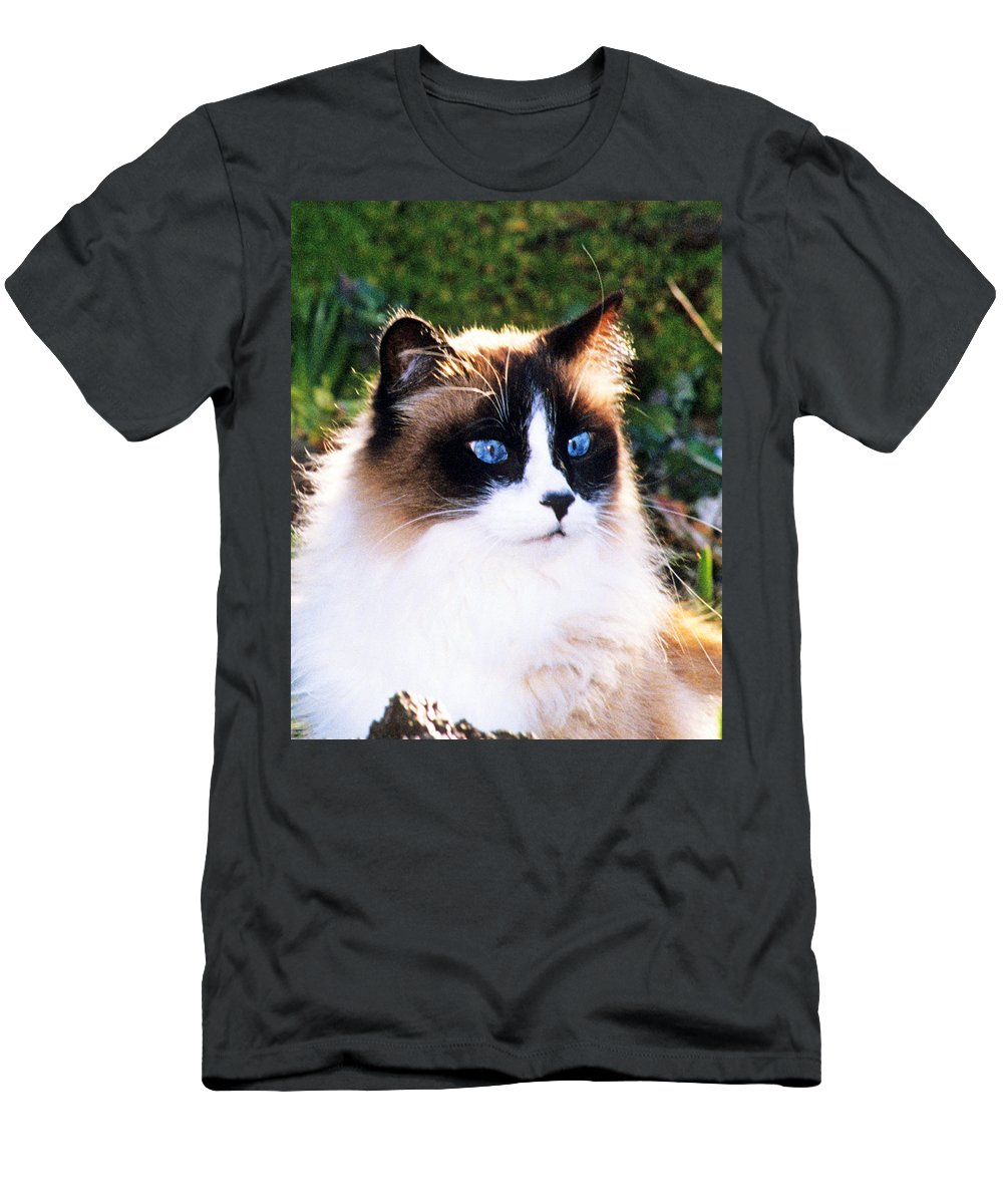Ragdoll Cat Men's T-Shirt (Athletic Fit) featuring the photograph Rikki Blue Eyes by Larry Allan