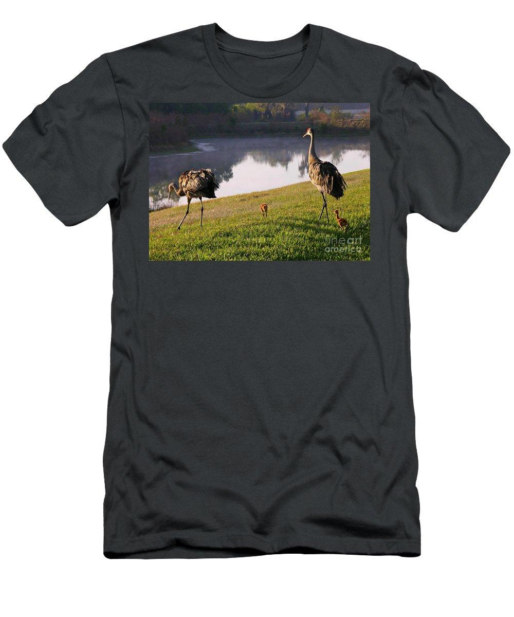 Sandhill Crane Men's T-Shirt (Athletic Fit) featuring the Sandhill Crane Family Fun by Carol Groenen