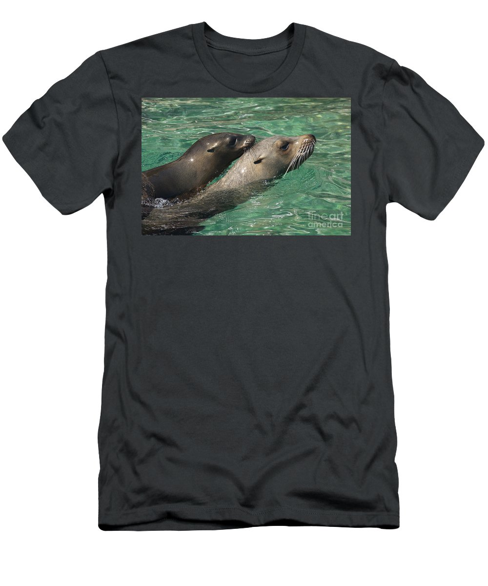 Fauna Men's T-Shirt (Athletic Fit) featuring the photograph Sea Lions by Raul Gonzalez Perez
