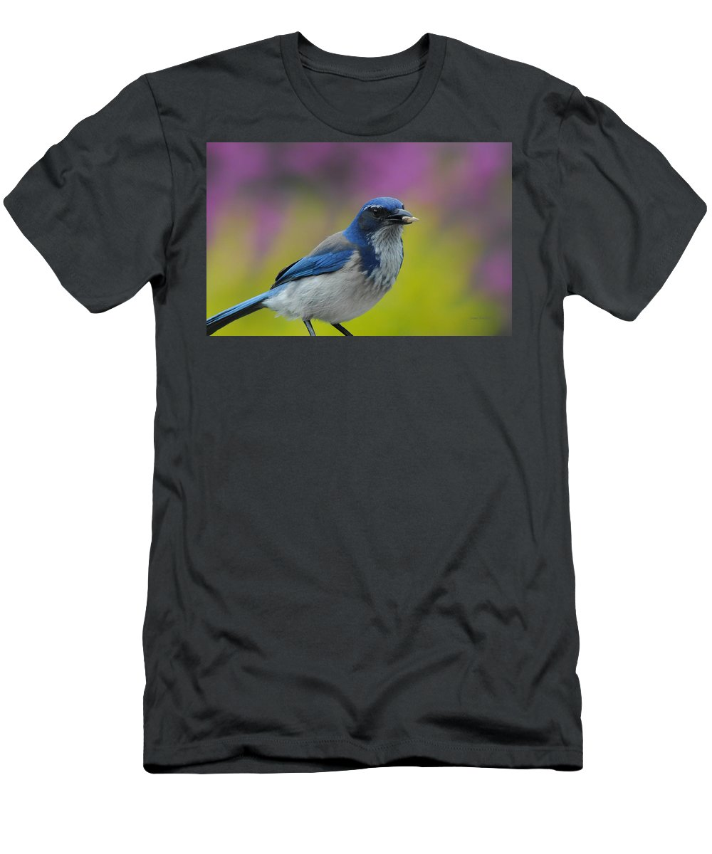 Blue Jay Men's T-Shirt (Athletic Fit) featuring the photograph Snack Time by Donna Blackhall