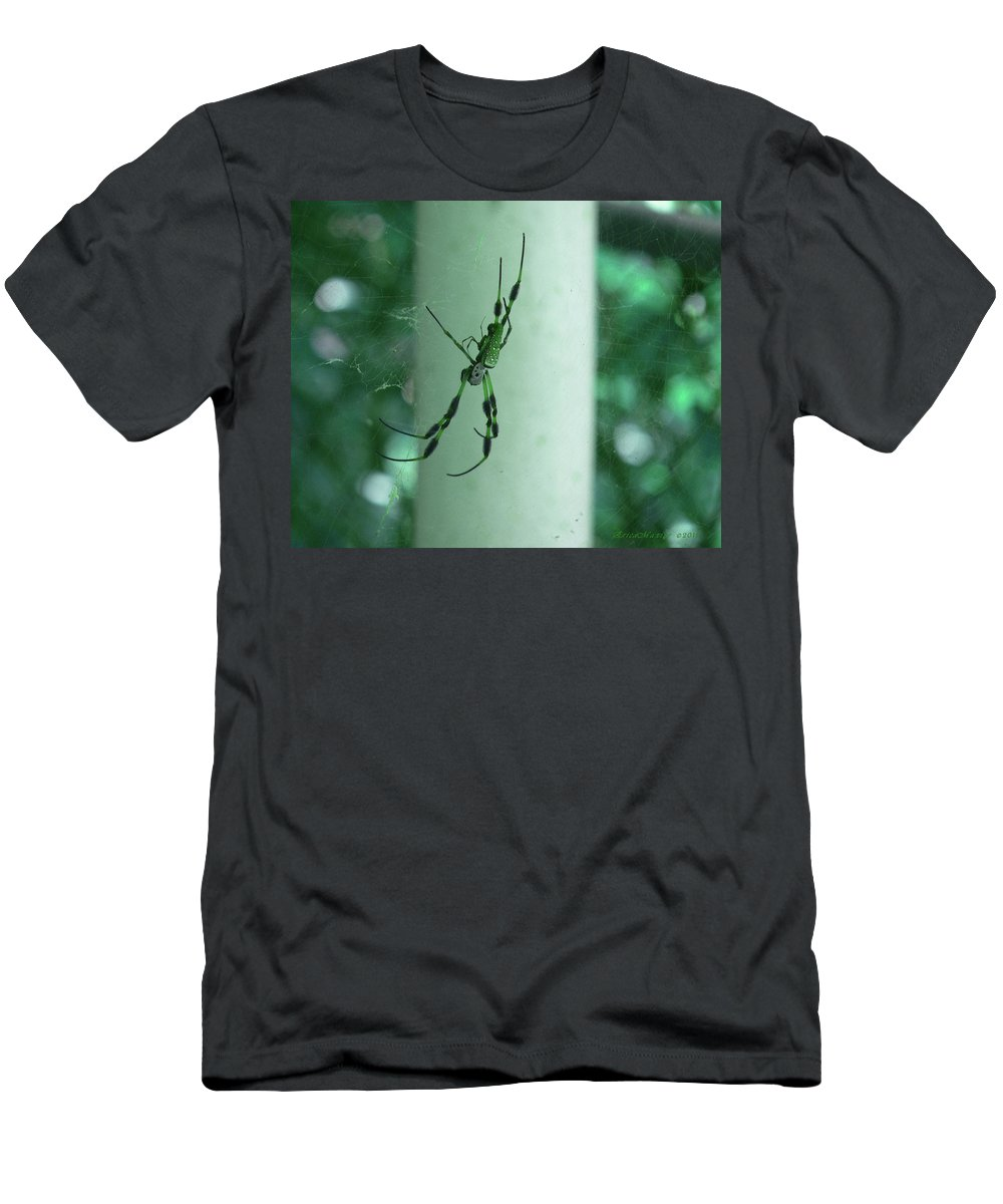 Ericamaxine Men's T-Shirt (Athletic Fit) featuring the photograph Spiders - Mr And Mrs by Ericamaxine Price