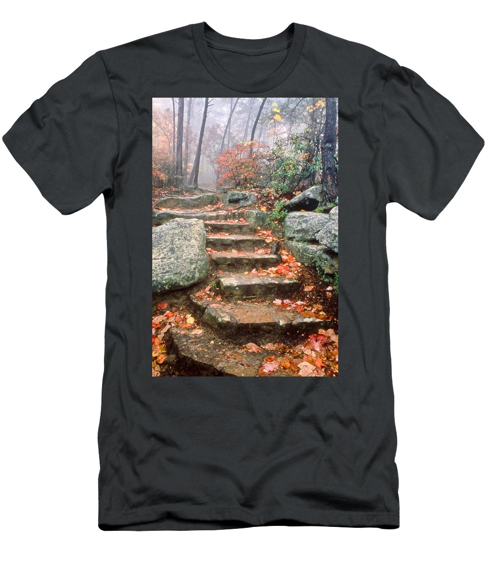 Steps Men's T-Shirt (Athletic Fit) featuring the photograph Steps Cloudland Canyon by Tom and Pat Cory