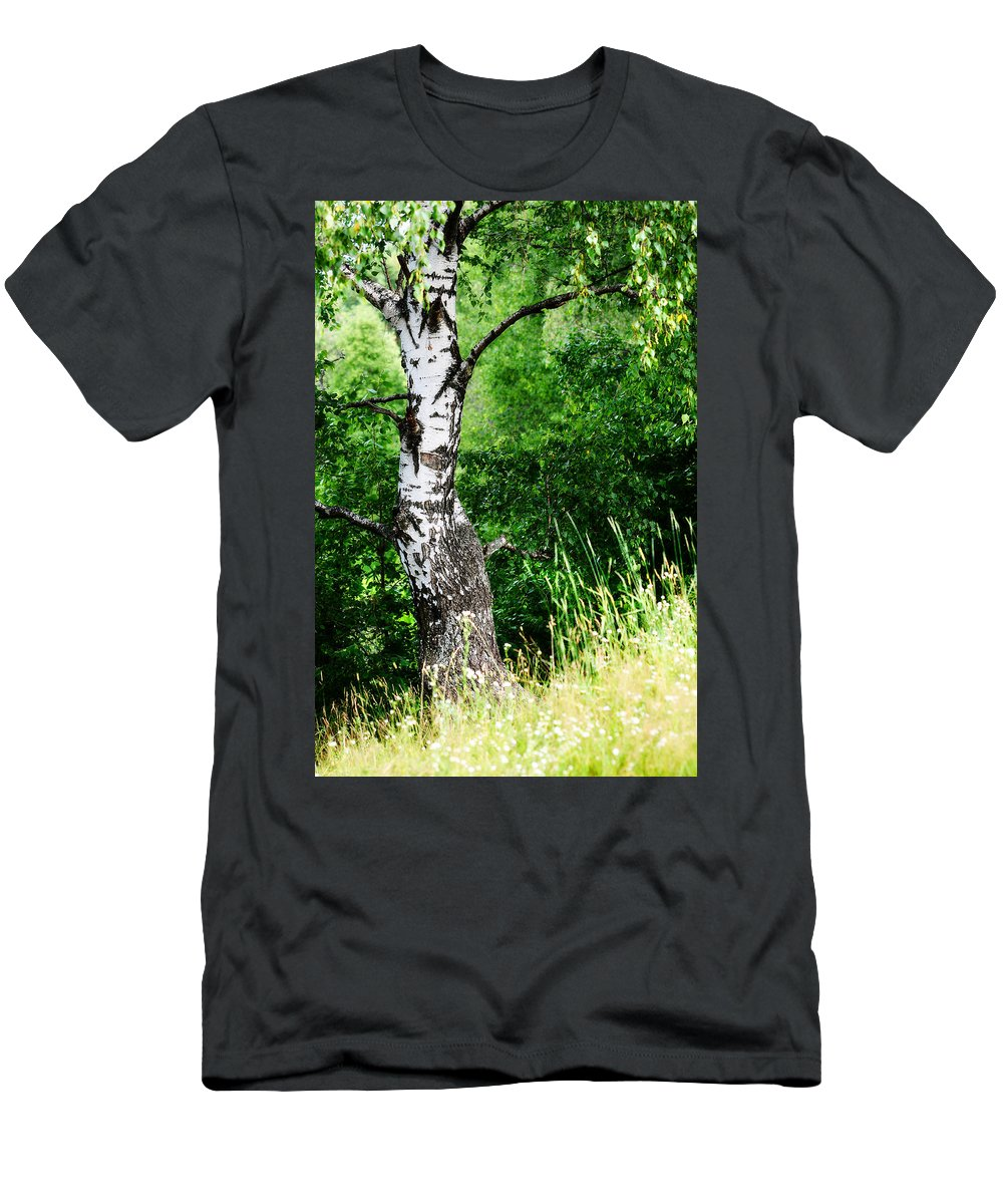 Tree Men's T-Shirt (Athletic Fit) featuring the photograph Summer Memory by Jenny Rainbow