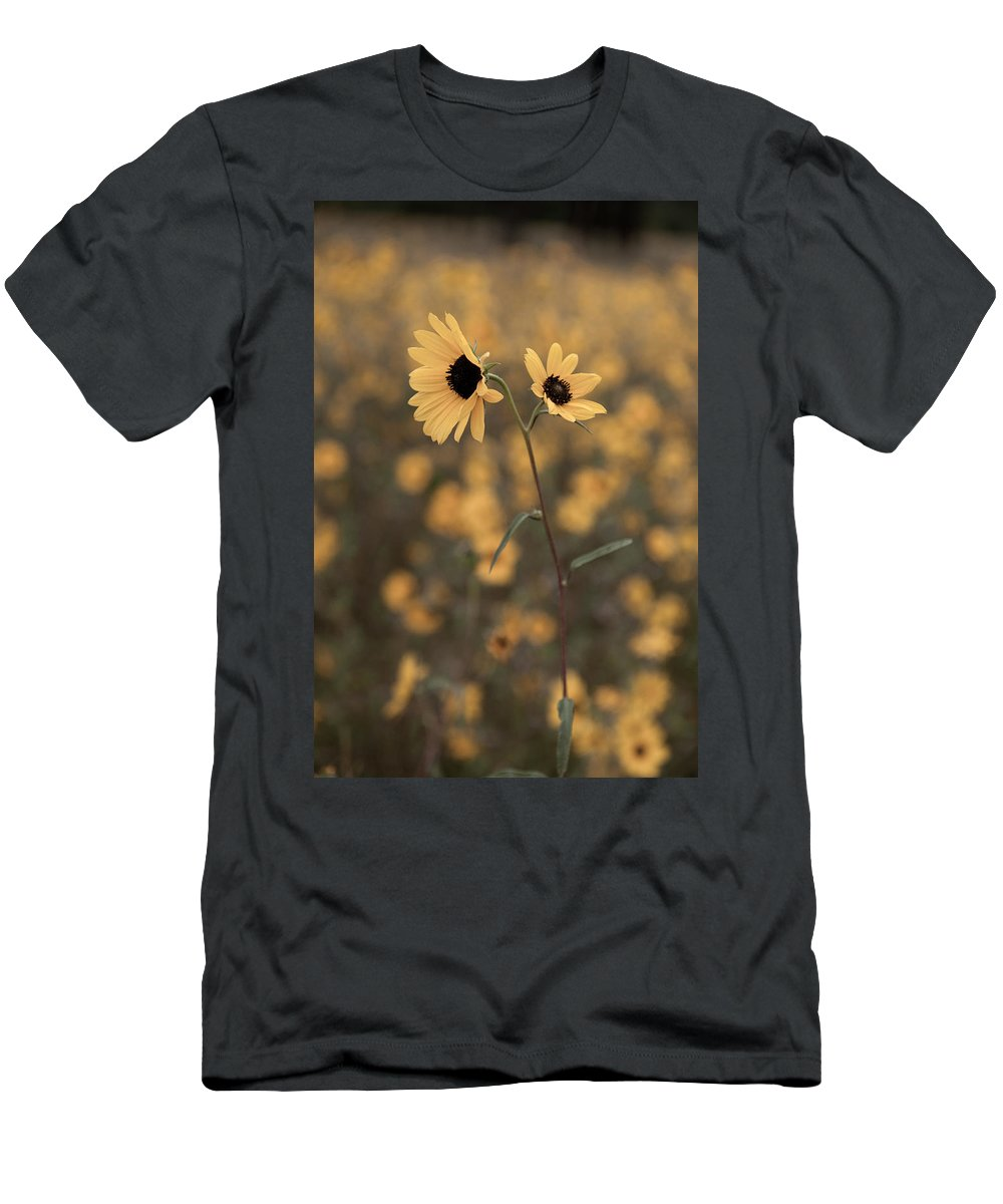 Sunflower Men's T-Shirt (Athletic Fit) featuring the photograph Sunflower In The Wild by Scott Sawyer
