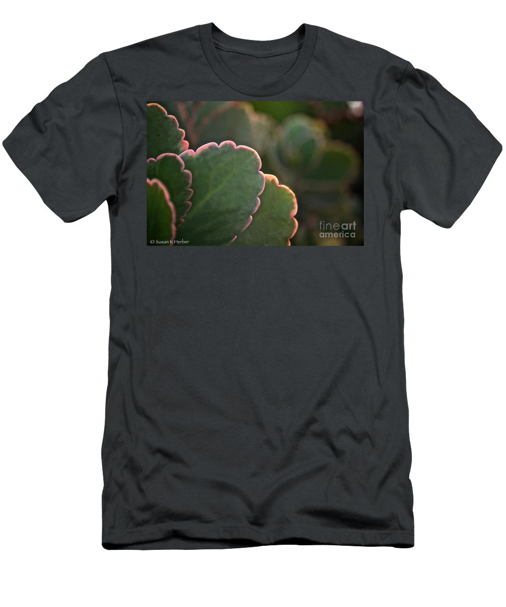 Plant Men's T-Shirt (Athletic Fit) featuring the photograph Sunset Succulents by Susan Herber