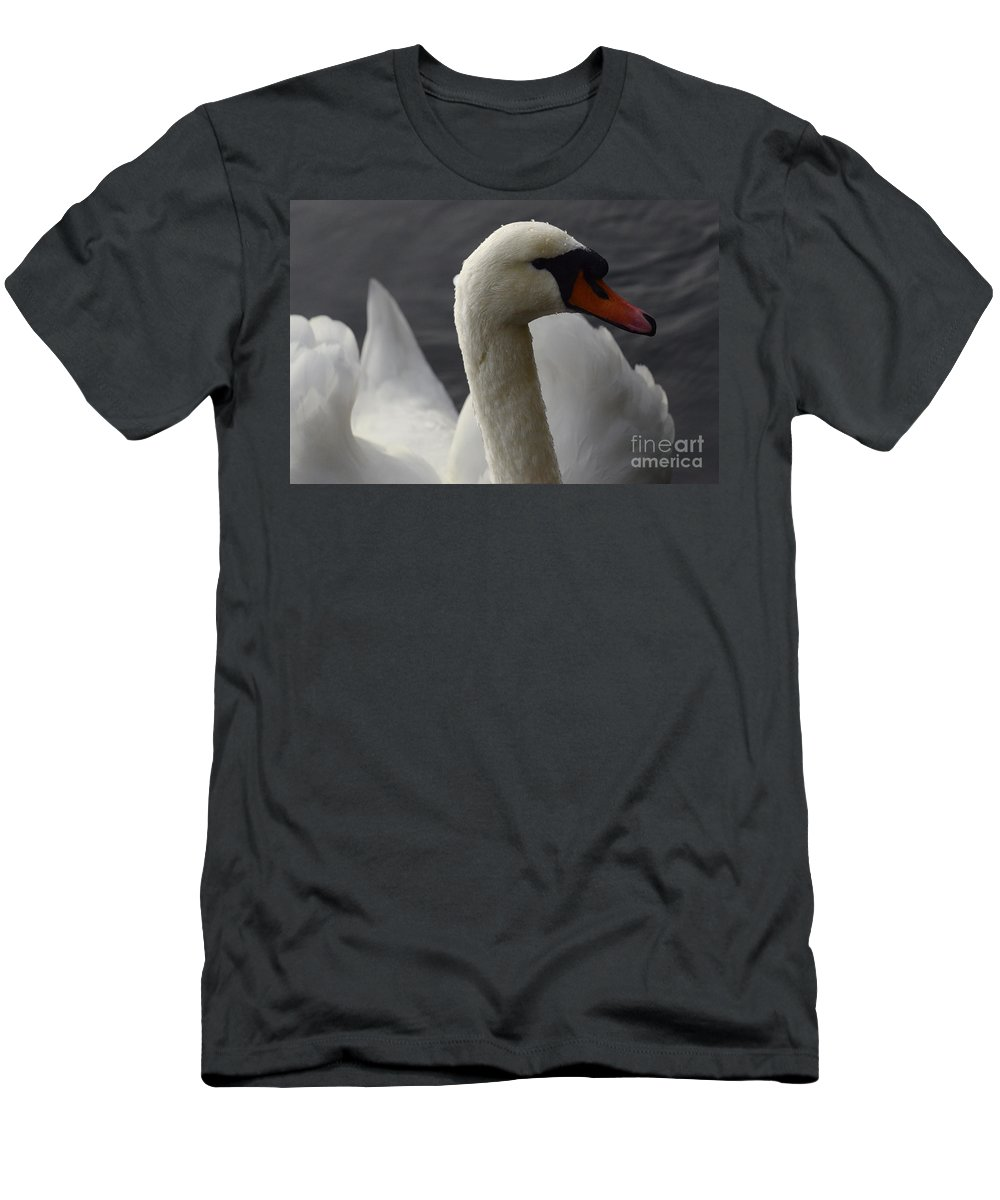 Swan Men's T-Shirt (Athletic Fit) featuring the photograph Swan Closeup by Bob Christopher