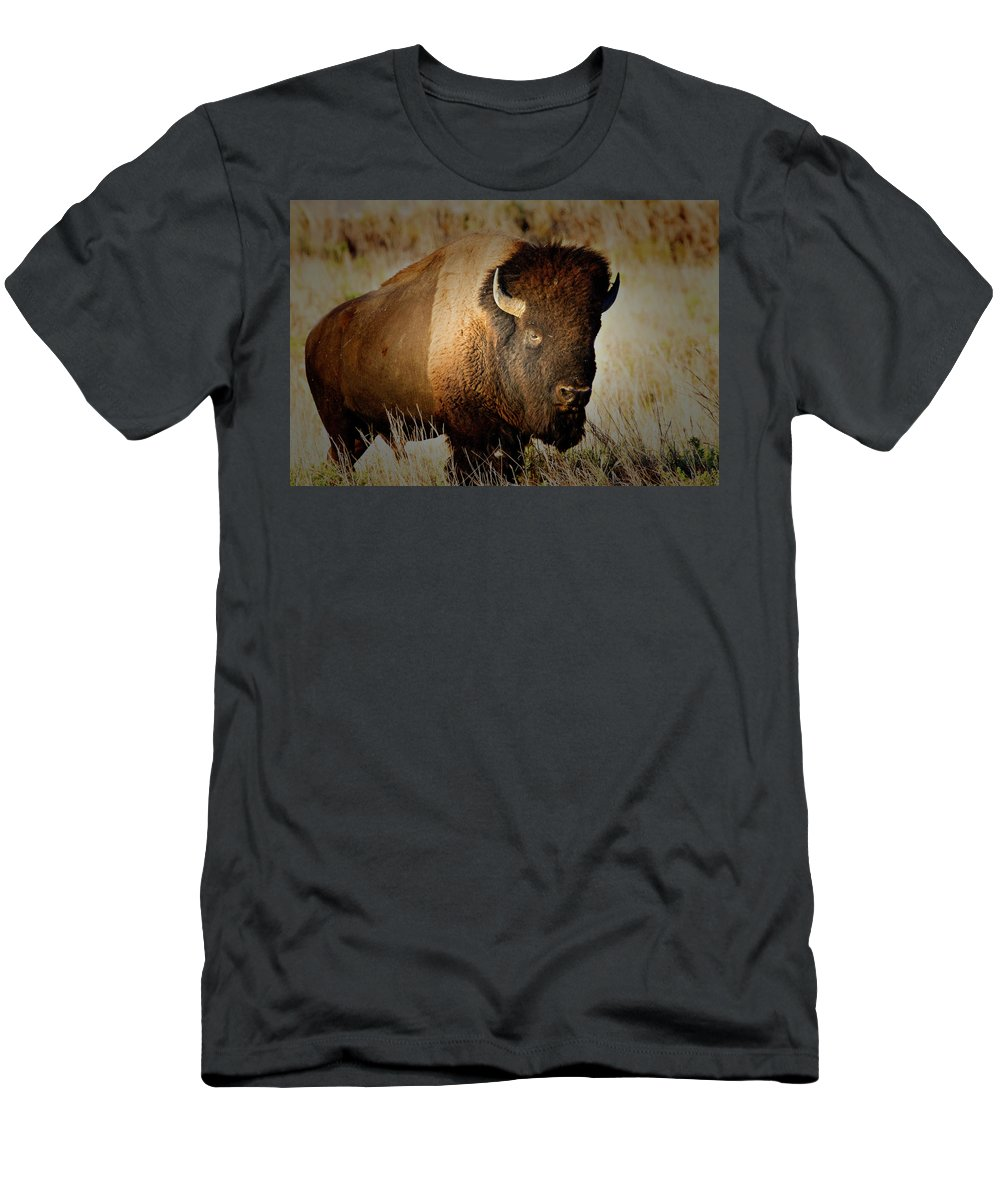 Bull Men's T-Shirt (Athletic Fit) featuring the photograph Taurus by Douglas Barnard