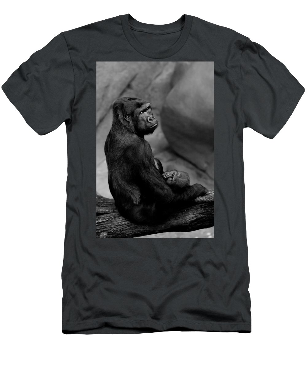 Gorilla Men's T-Shirt (Athletic Fit) featuring the photograph Tender Moment by Sebastian Musial