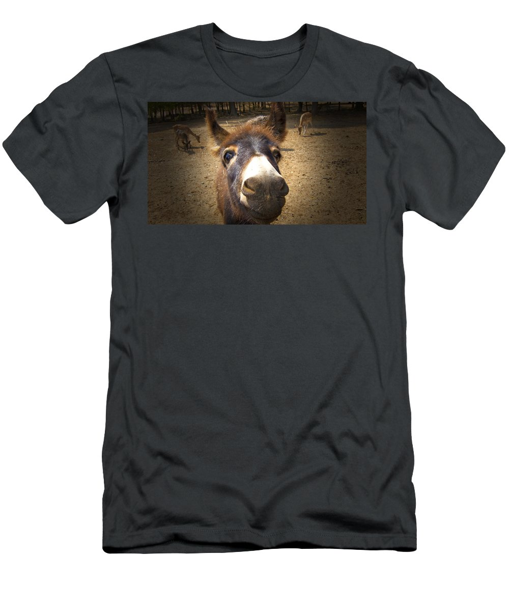 Donkey Men's T-Shirt (Athletic Fit) featuring the photograph That Looks Eye-popping Good by Douglas Barnard