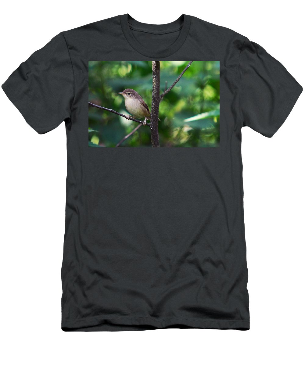 Nature Men's T-Shirt (Athletic Fit) featuring the photograph The Best Singer Of The Woods And Fields by Jenny Rainbow