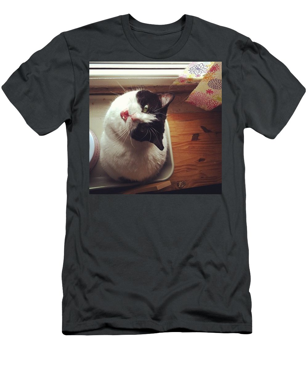 Catsofinstagram Men's T-Shirt (Slim Fit) featuring the photograph the Bowl's Empty! #cat by Katie Cupcakes