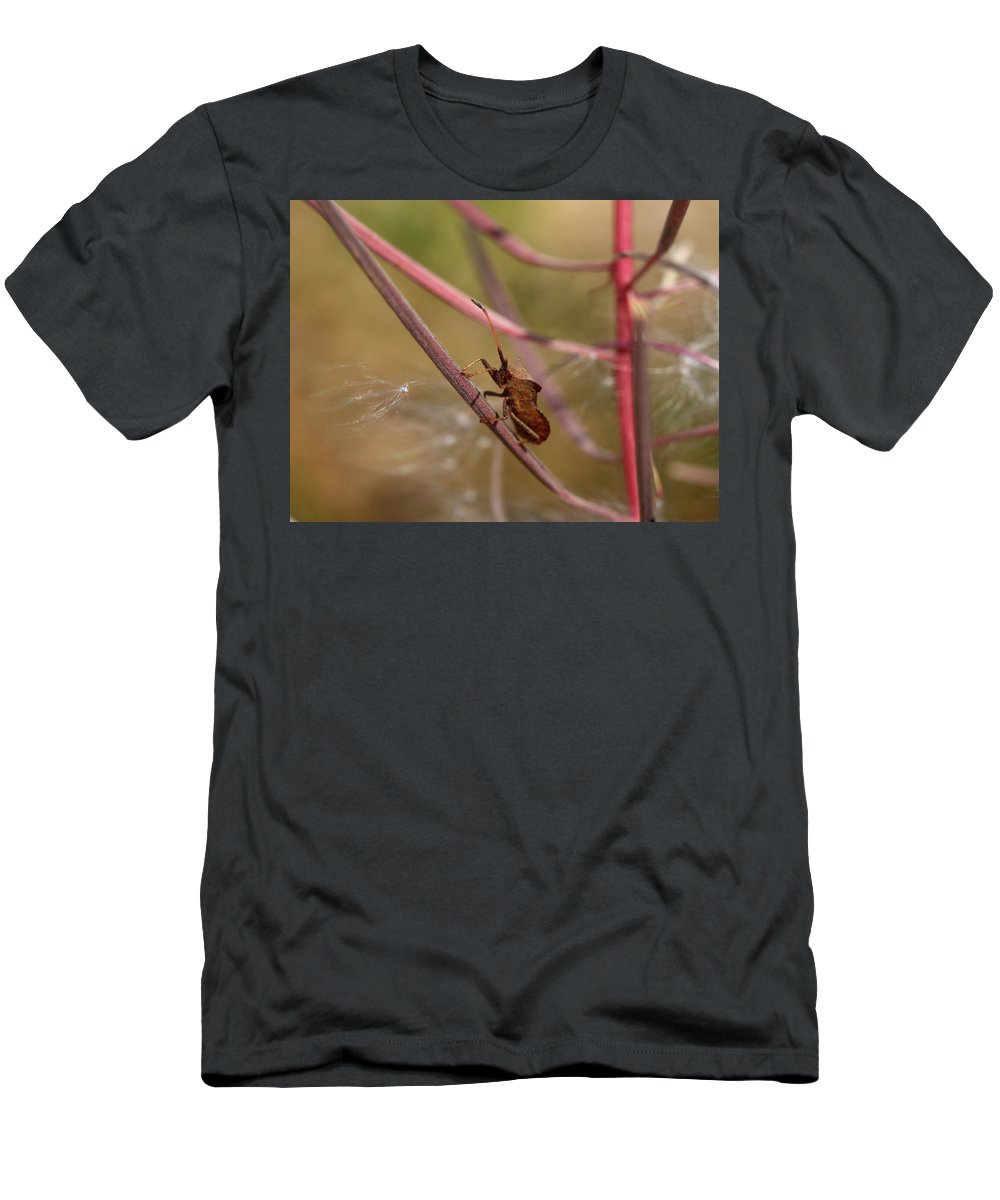 Jouko Lehto Men's T-Shirt (Athletic Fit) featuring the photograph The Bug With Fireweed Seeds by Jouko Lehto