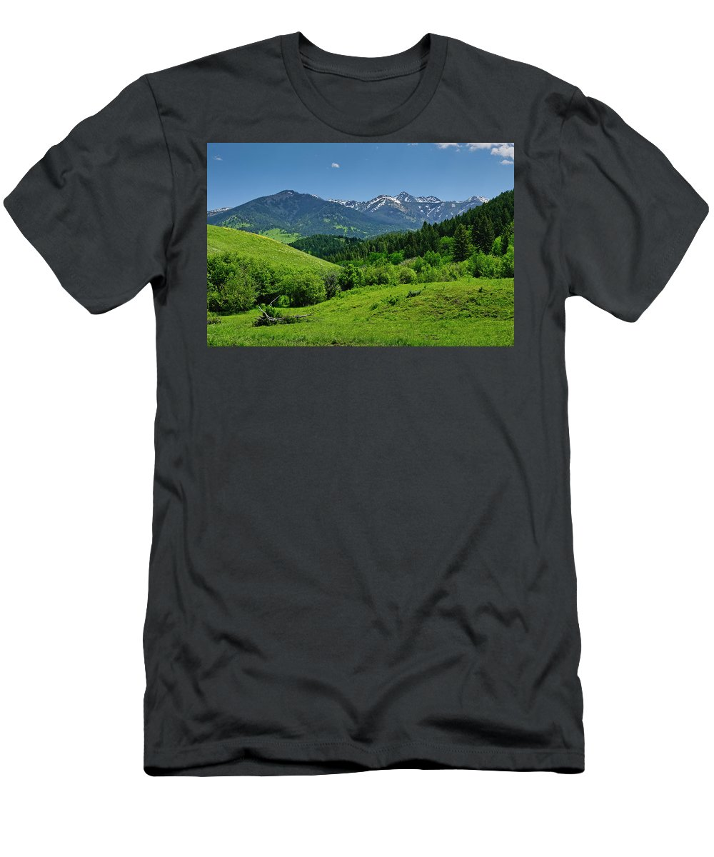 Americas Men's T-Shirt (Athletic Fit) featuring the photograph The Crazy Mountains by Roderick Bley