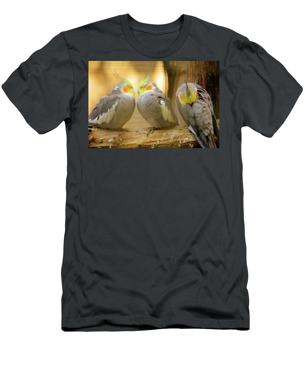 Cockatiels Men's T-Shirt (Athletic Fit) featuring the photograph They Love Each Other But Nobody Loves Me by Ian Middleton