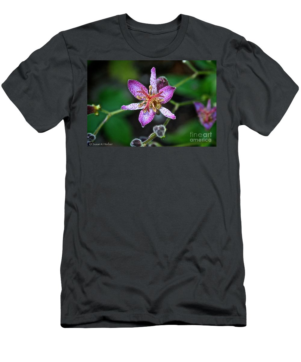 Outdoors Men's T-Shirt (Athletic Fit) featuring the photograph Toad Lily by Susan Herber