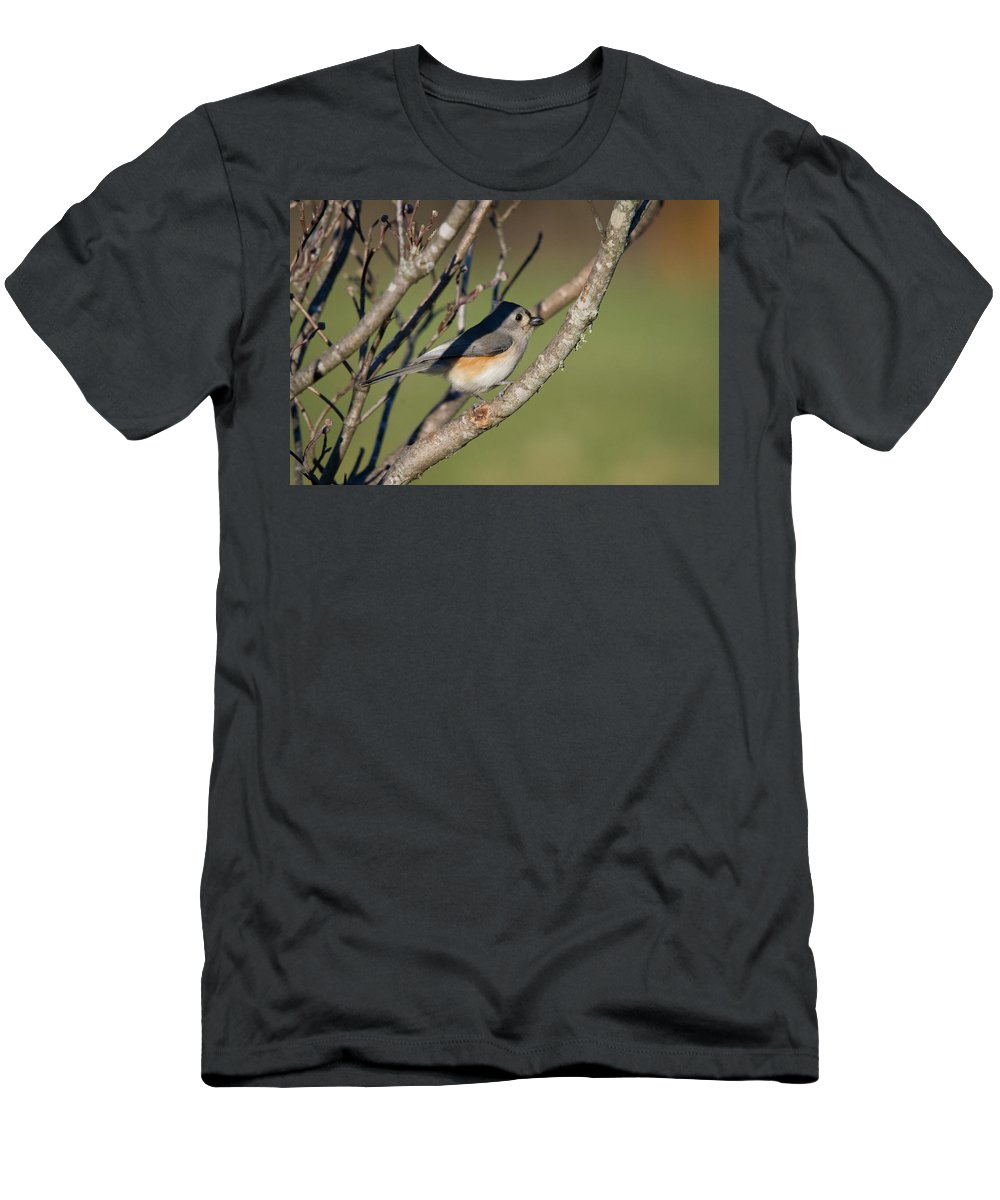 Bird Men's T-Shirt (Athletic Fit) featuring the photograph Tufted Titmouse by Steve Stuller