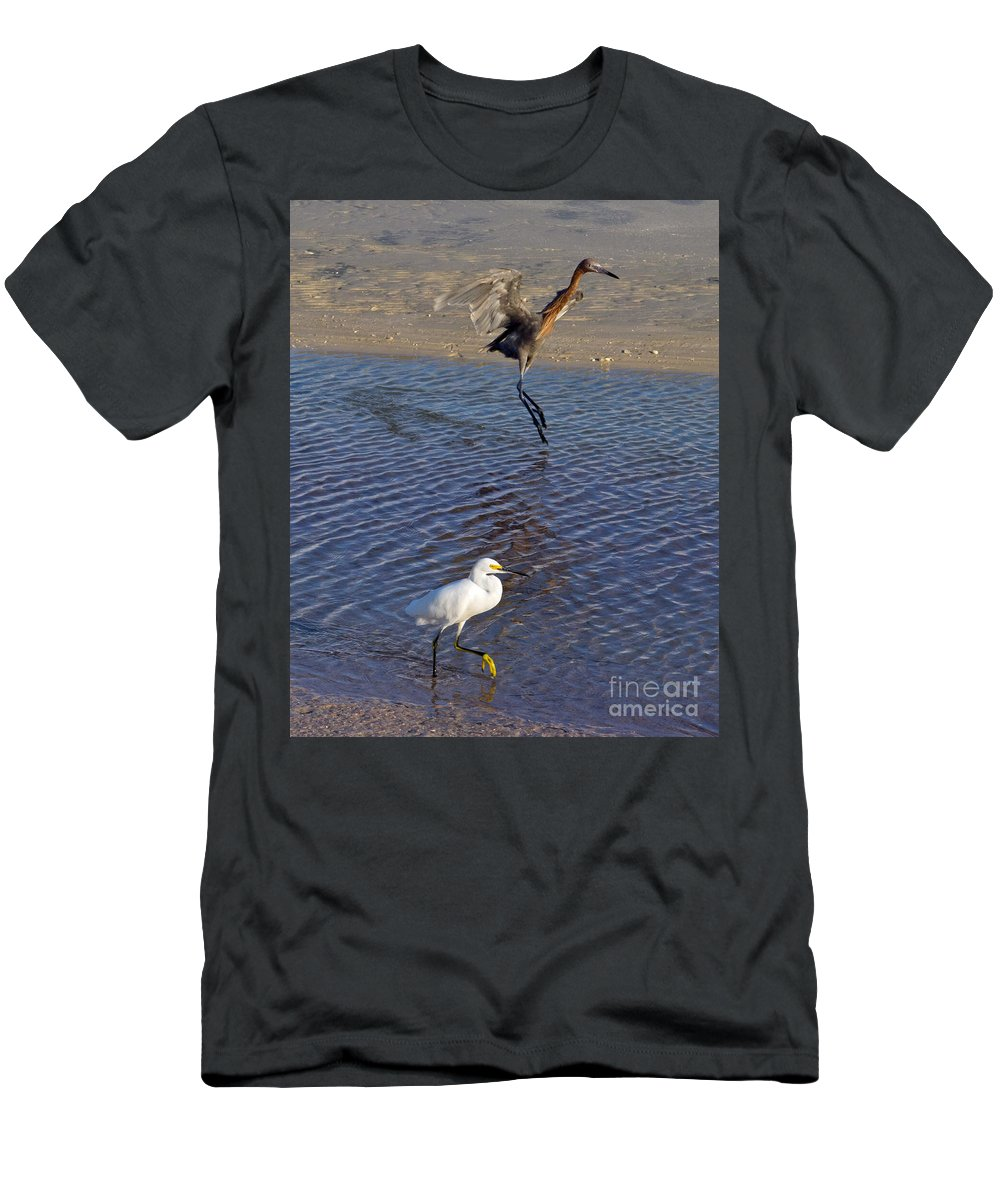 Ruffled Men's T-Shirt (Athletic Fit) featuring the photograph Two Strutting Egrets by Stephen Whalen
