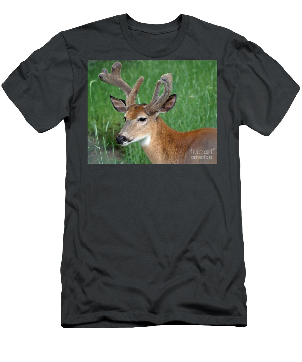 Deer Men's T-Shirt (Athletic Fit) featuring the photograph Velvet by Living Color Photography Lorraine Lynch