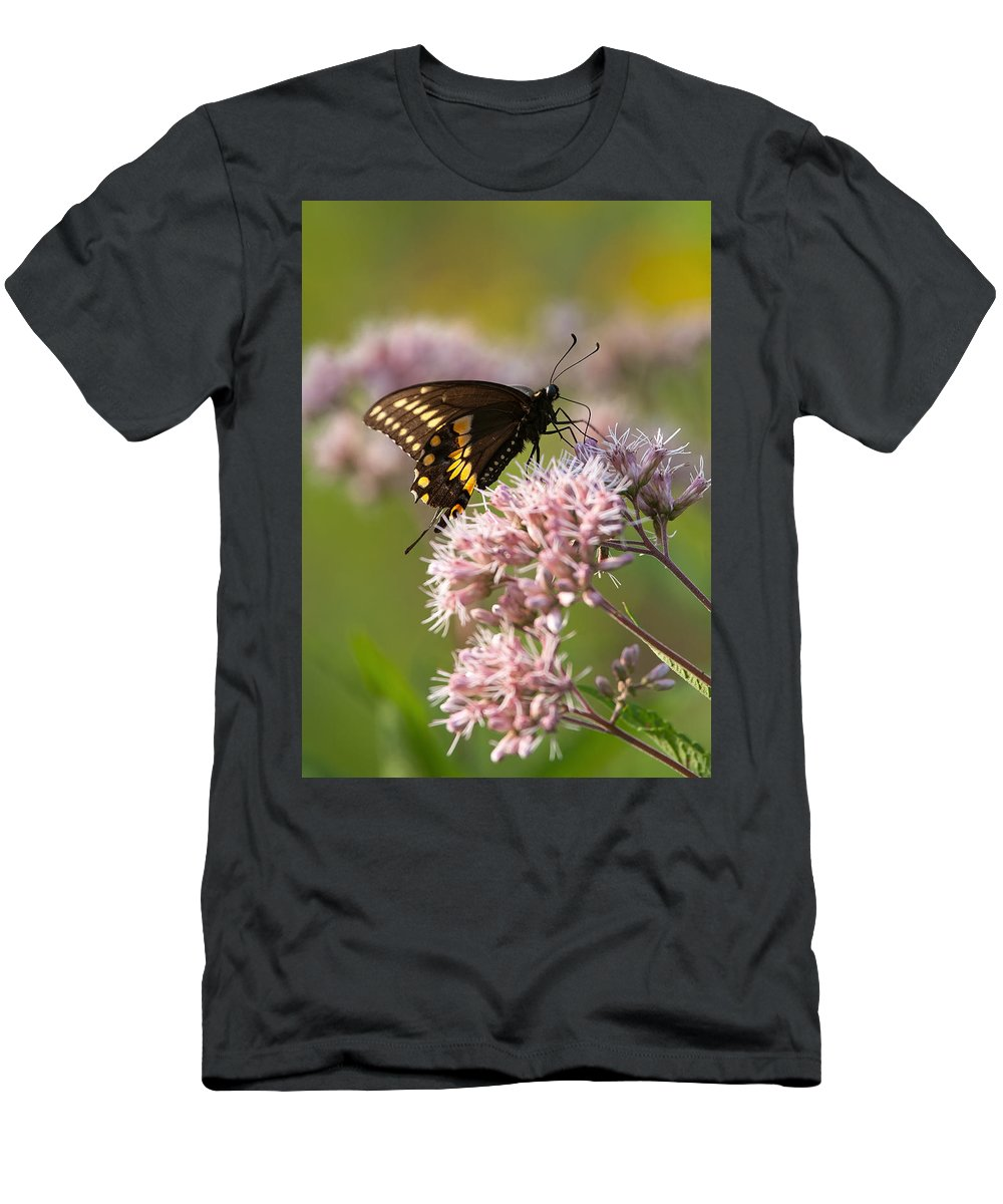 Butterfly Men's T-Shirt (Athletic Fit) featuring the photograph Victuals by Dale Kincaid