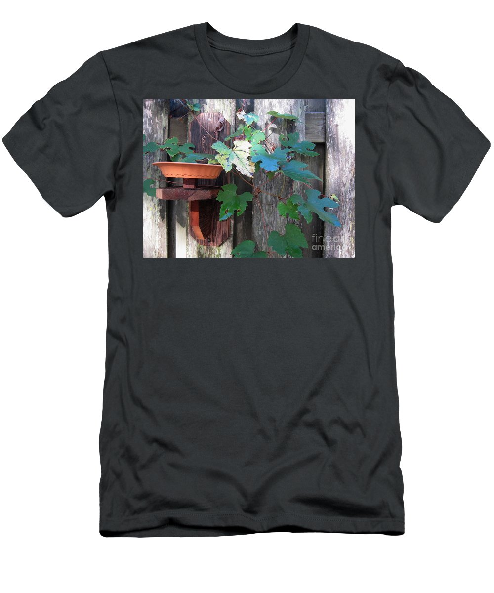 Vine Men's T-Shirt (Athletic Fit) featuring the photograph Vine And Feeder by Jan Prewett